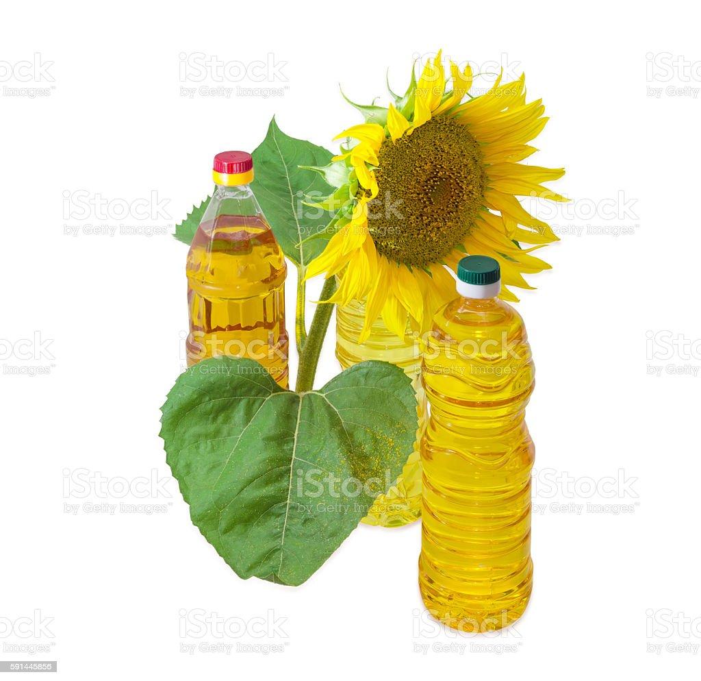 Three bottles of different sunflower oil and flower of sunflower stock photo