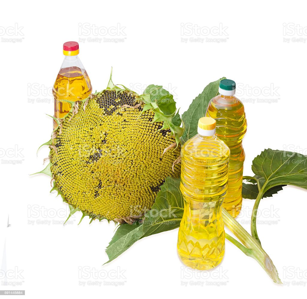 Three bottles of different sunflower oil and sunflower head stock photo