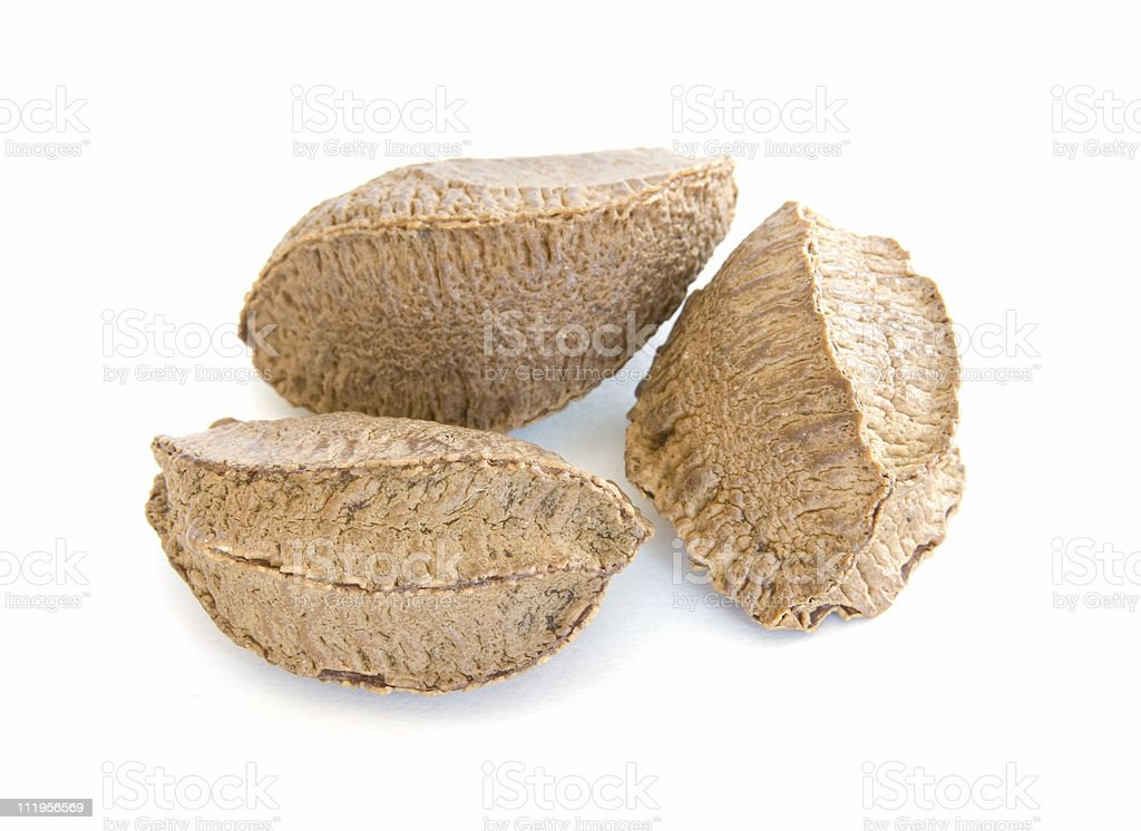 Three Brazil nuts in shells on white royalty-free stock photo