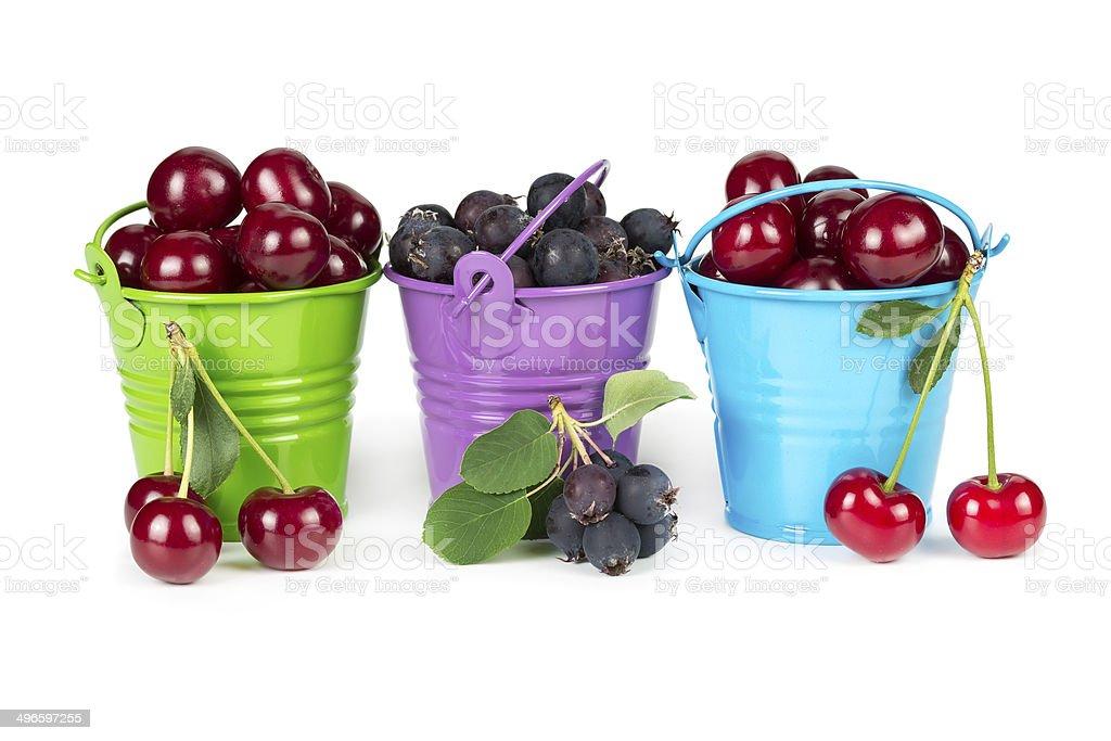 Three buckets with berries stock photo
