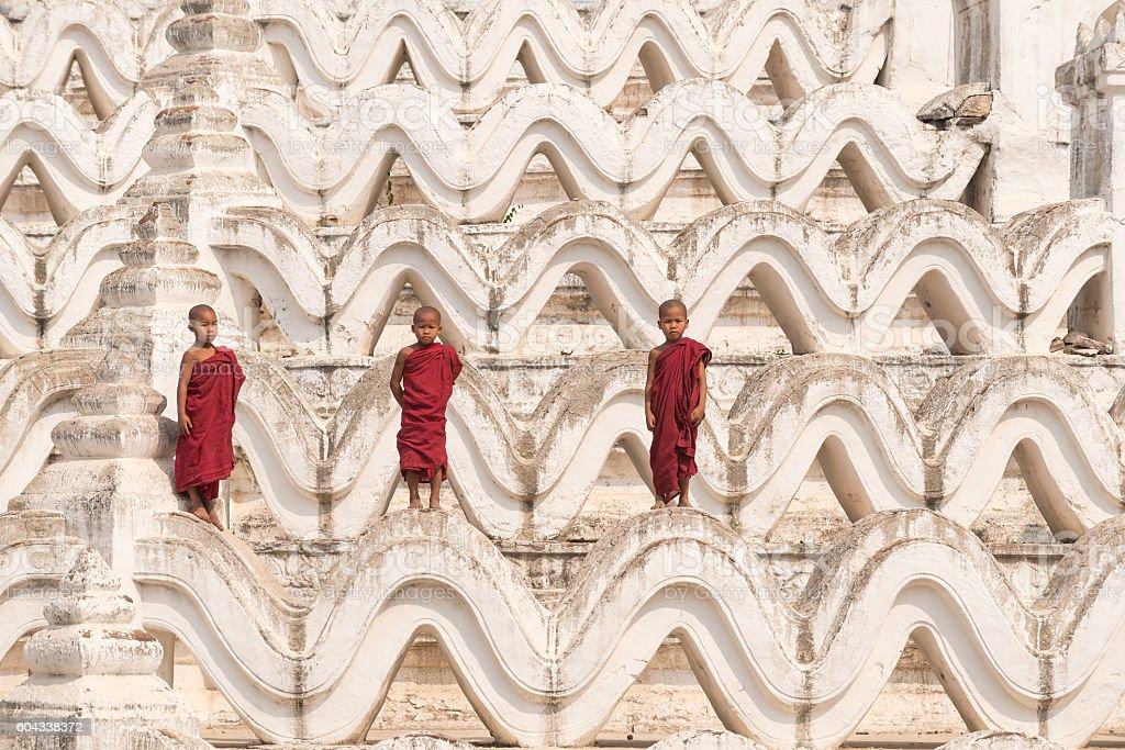 Three Buddhist novices stock photo