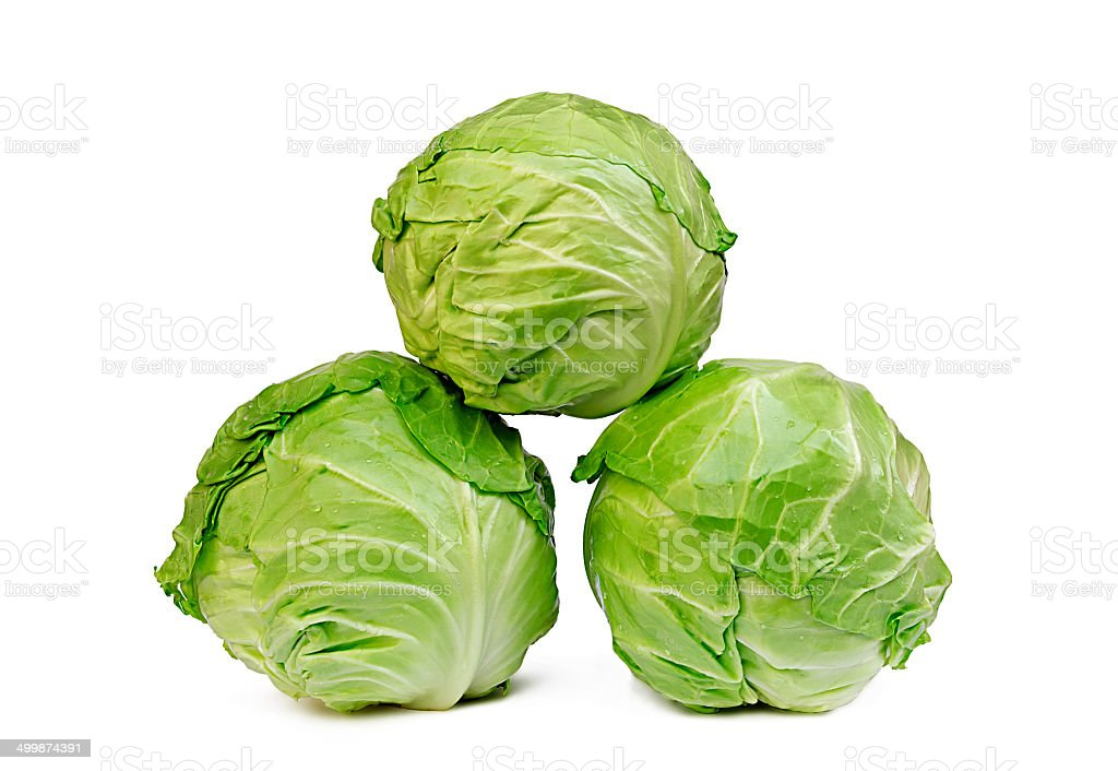 three cabbages on a white background stock photo