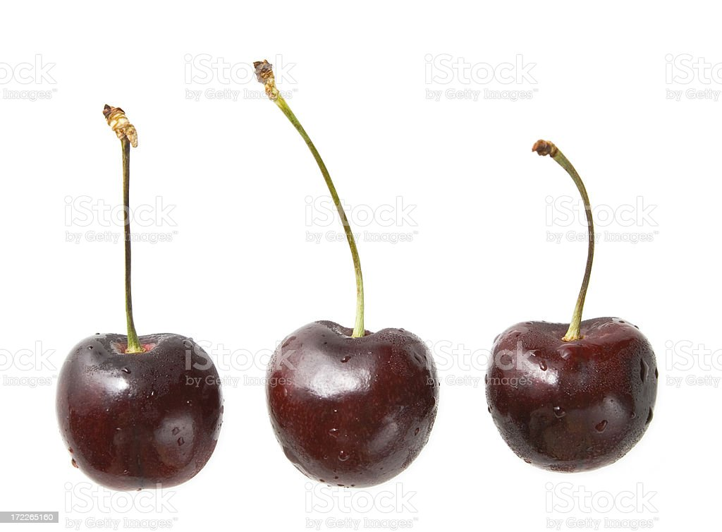 Three cherries in a row royalty-free stock photo
