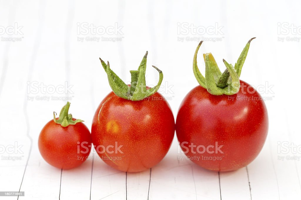Three Cherry tomatoes line up royalty-free stock photo