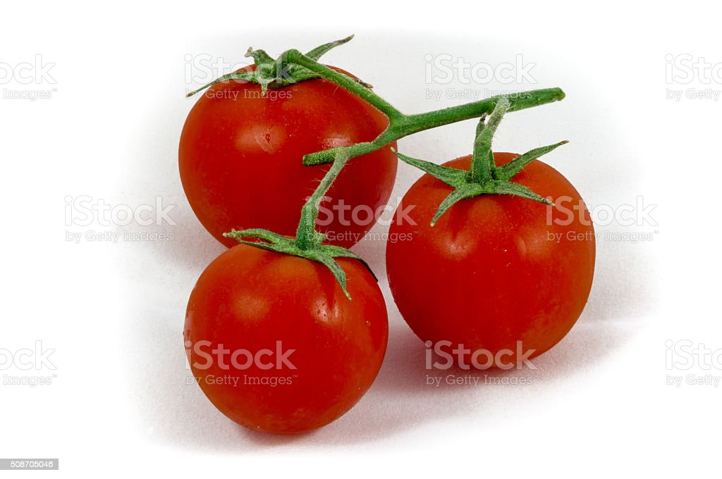 Three cherry (pachino) tomatoes stock photo