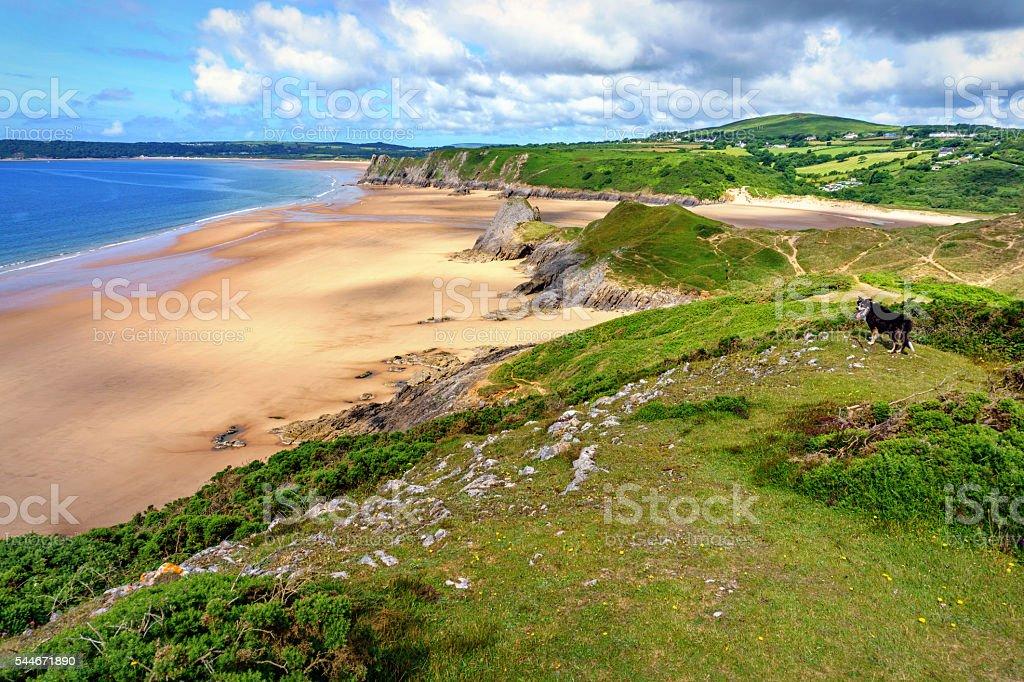 Three Cliffs Bay on Gower stock photo