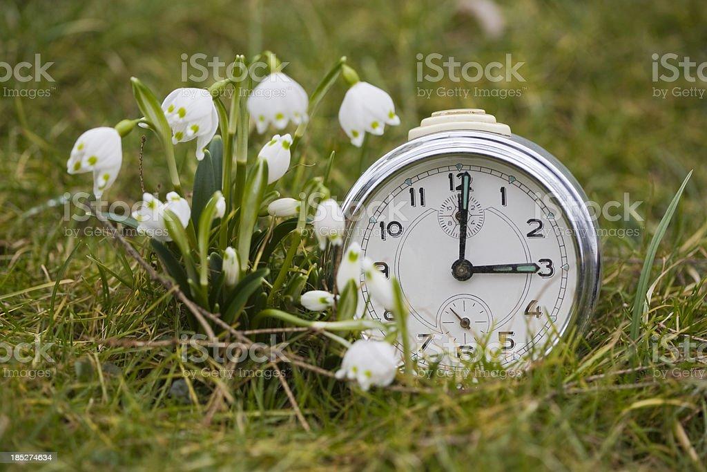 Three clock royalty-free stock photo