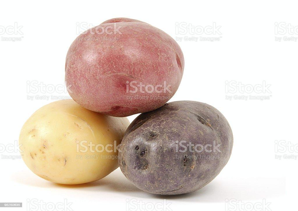Three Colored Potatoes royalty-free stock photo