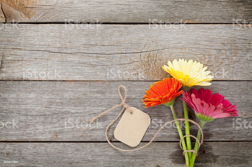 Three colorful gerbera flowers with tag stock photo
