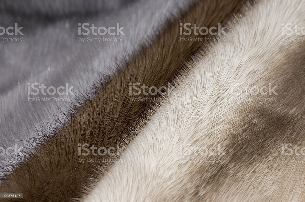 Three colours of mink fur stock photo