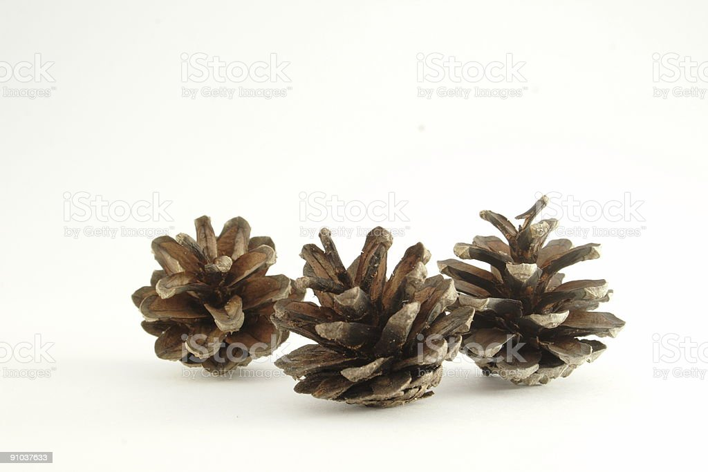 three cones royalty-free stock photo