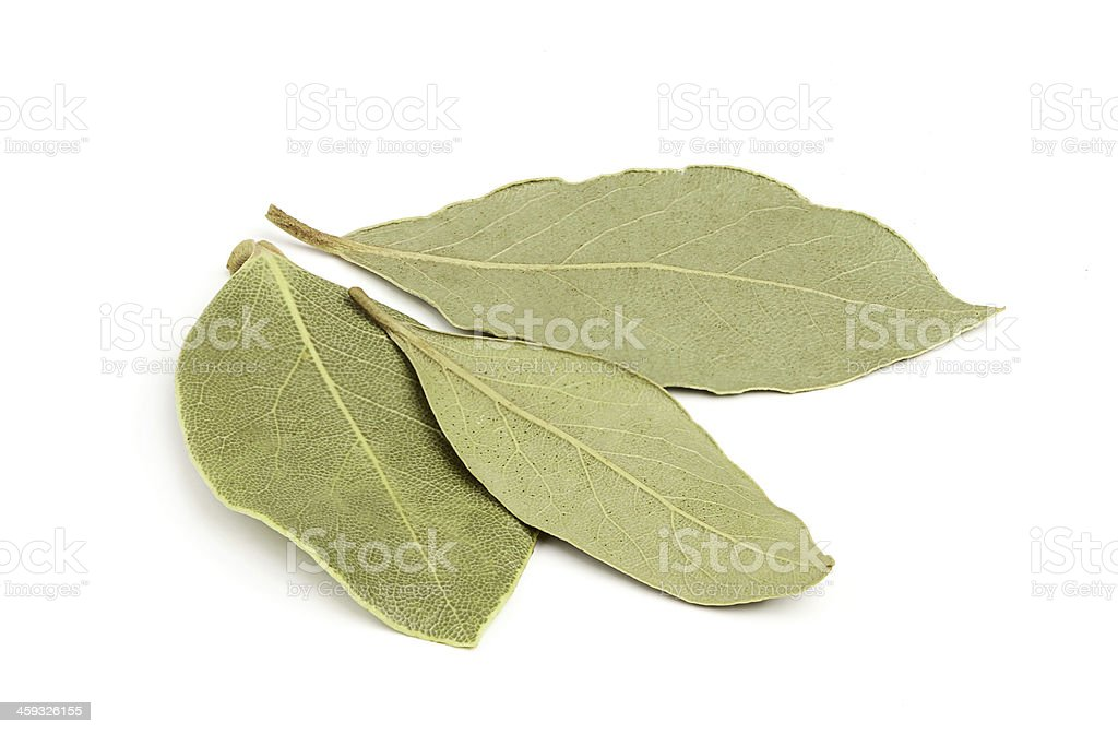 Three dried bay leaves close-up. royalty-free stock photo