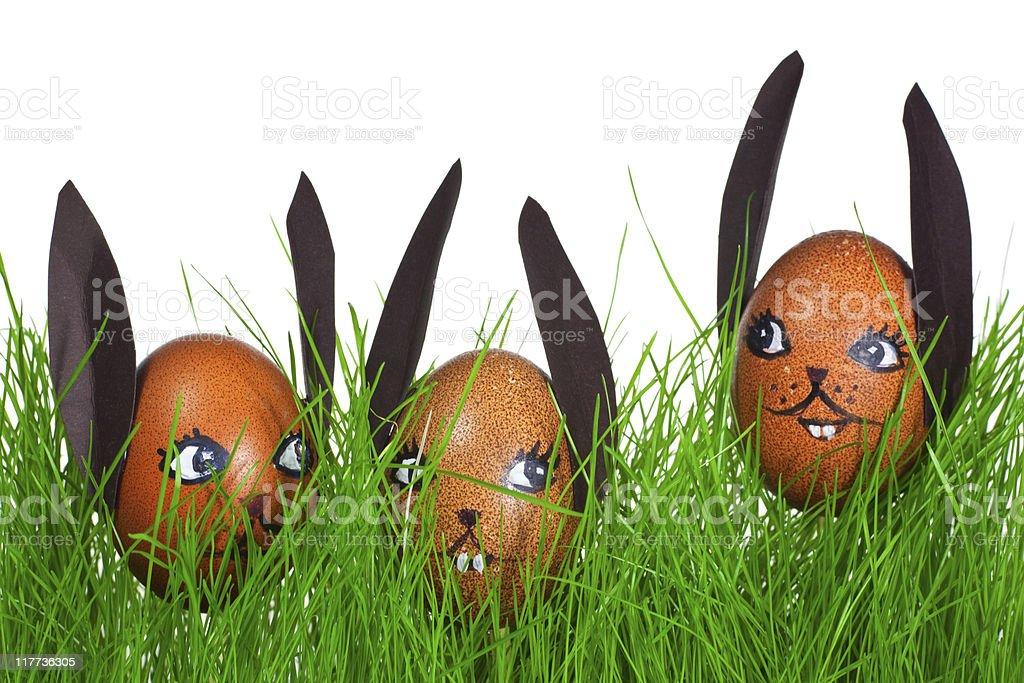 Three Easter Bunny royalty-free stock photo