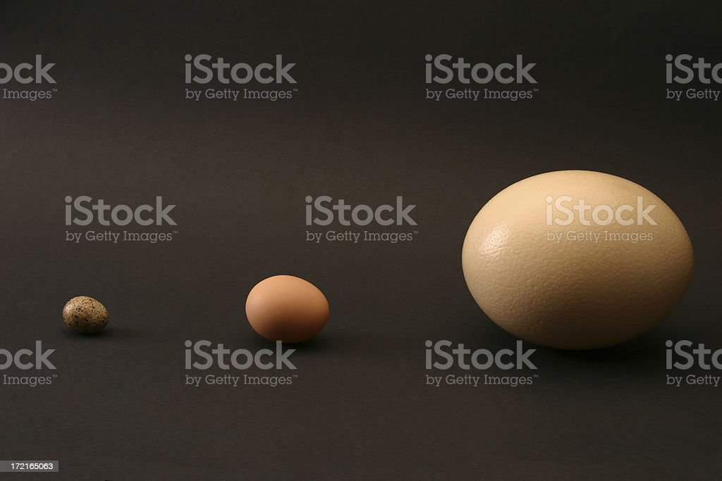 Three Easter Eggs - Ostrich, hen, quail - SUPPORT stock photo