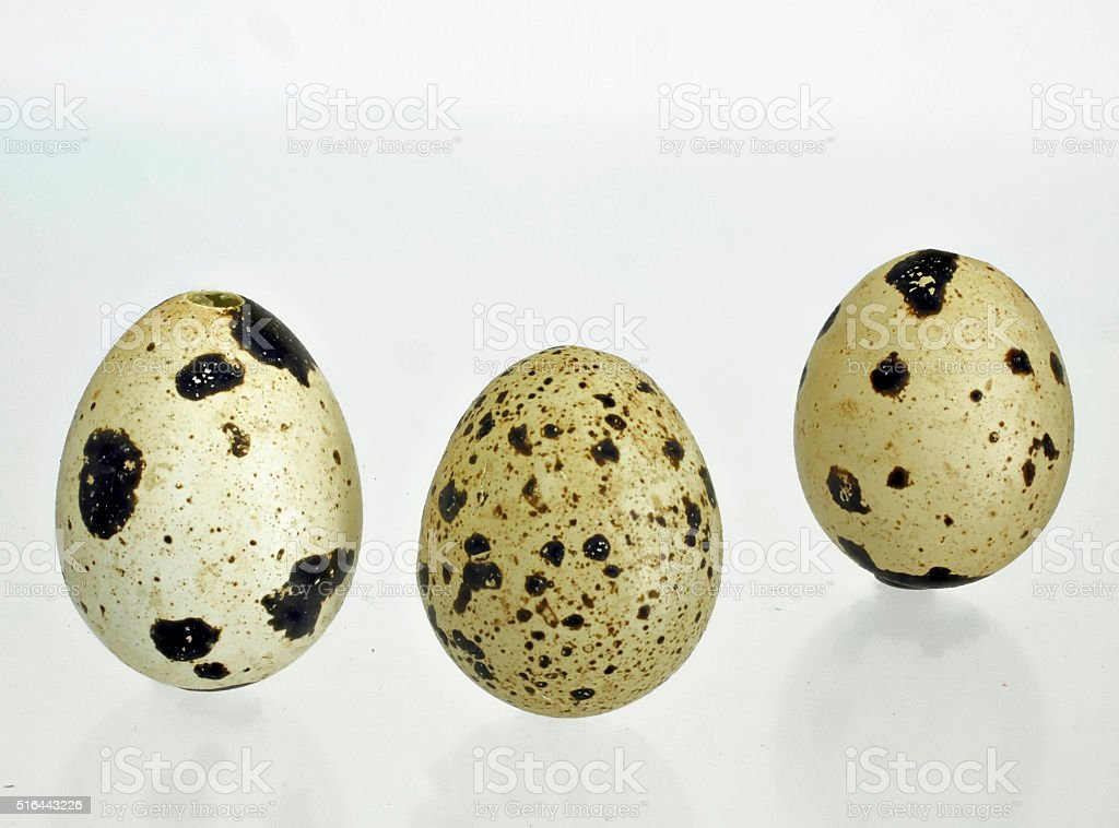 three empty quail eggs with for cropping stock photo