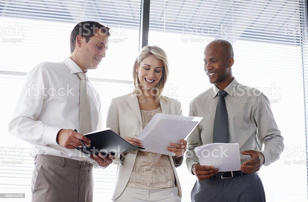 Three executives reading business plans royalty-free stock photo