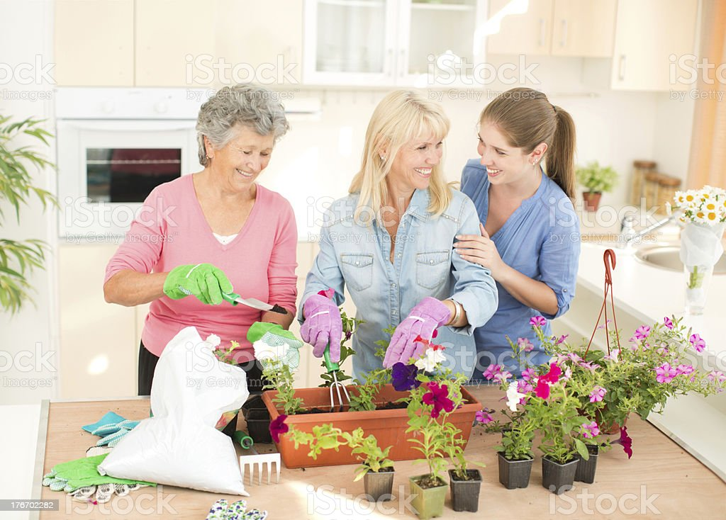 Three female generations. royalty-free stock photo