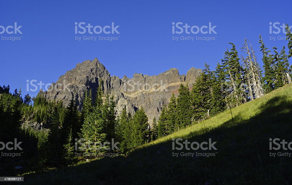 Three Fingered Jack Meadow royalty-free stock photo