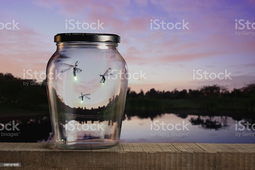Three fireflies trapped inside a glass jar overlooking lake stock photo