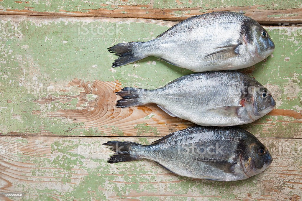 Three Fresh Fish stock photo