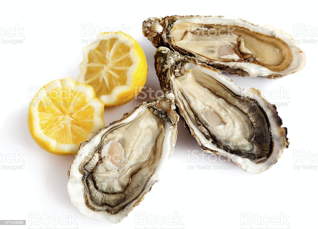 Three fresh oysters with lemon stock photo