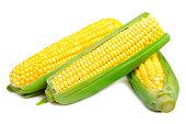 Three Fresh Sweet Corn with Leafs