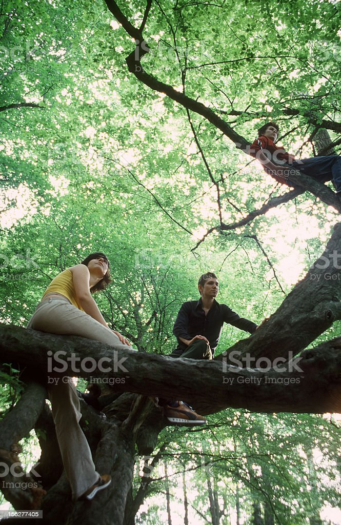 Three Friends Climbing Tree stock photo