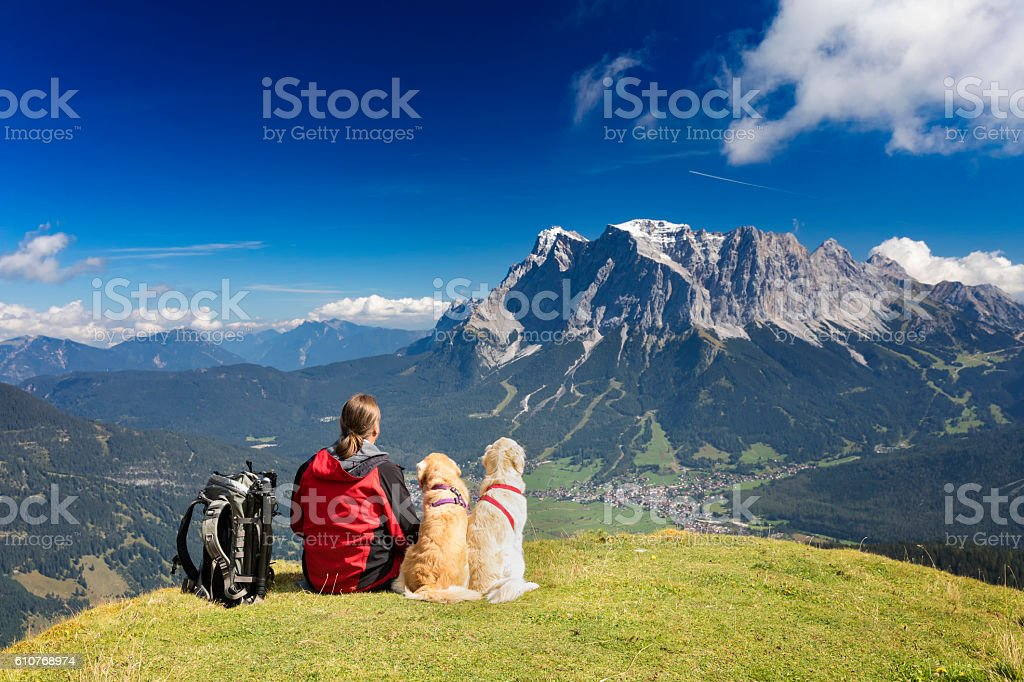 Three friends, man with  his dogs are looking to Zugspitze stock photo