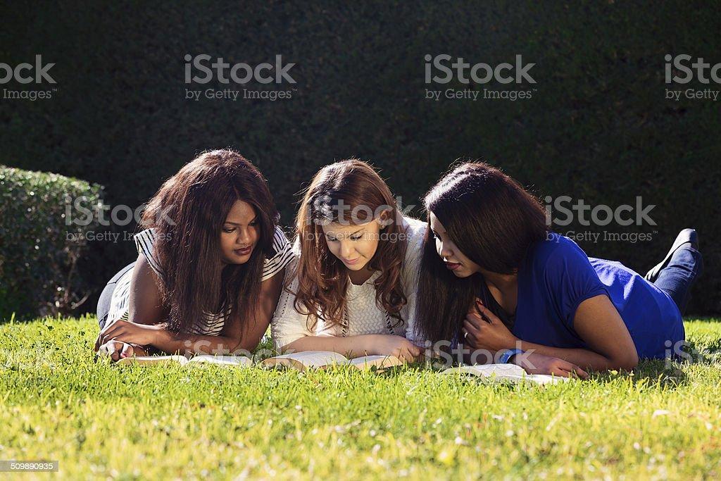 Three Friends Studying stock photo