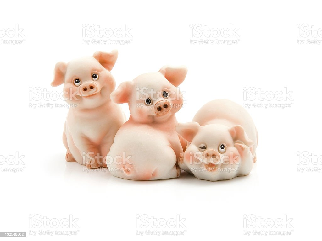 Three funny piggie stock photo