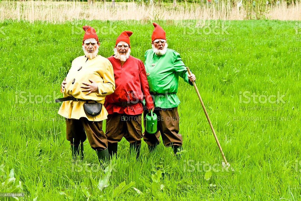 three garden gnomes enjoy children at the festival for inaugurat stock photo