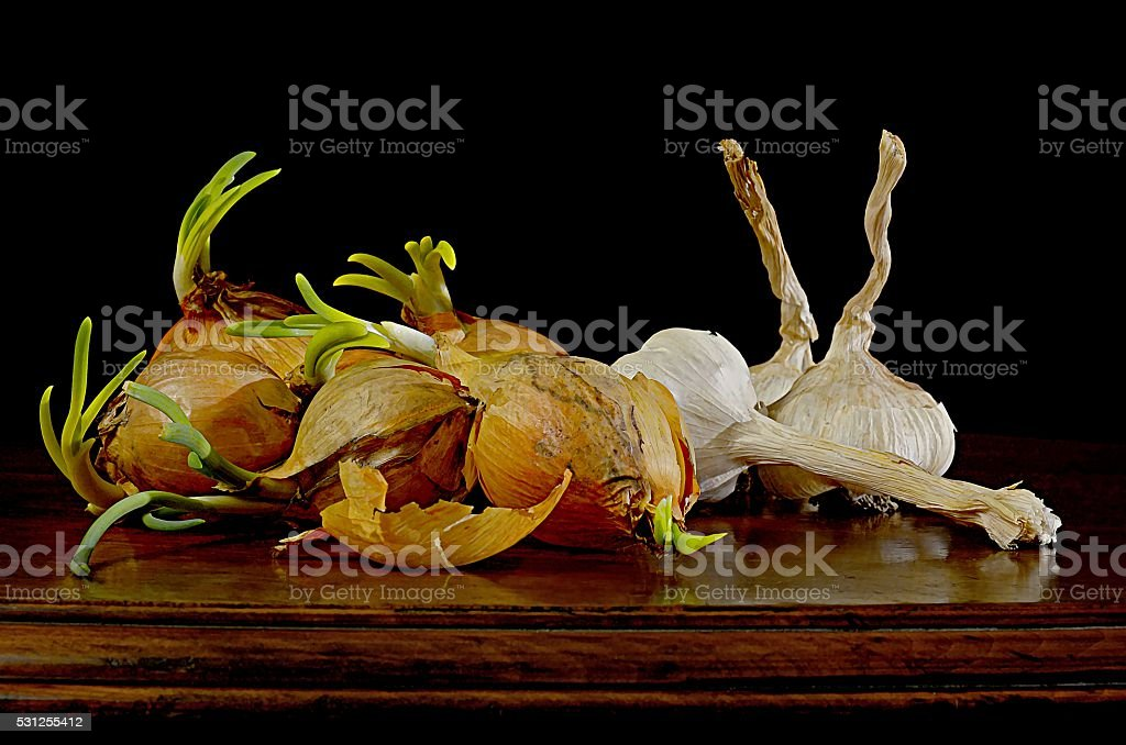 Three garlic and few onions with budding sprout stock photo