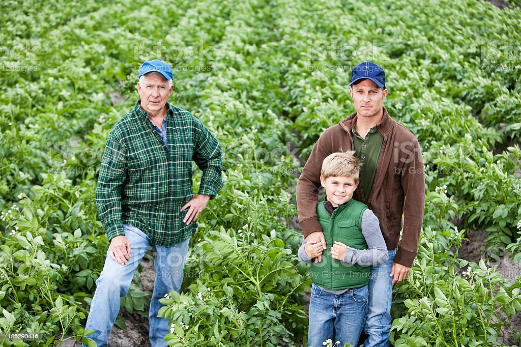 Three generations on the family farm, standing in potato field royalty-free stock photo