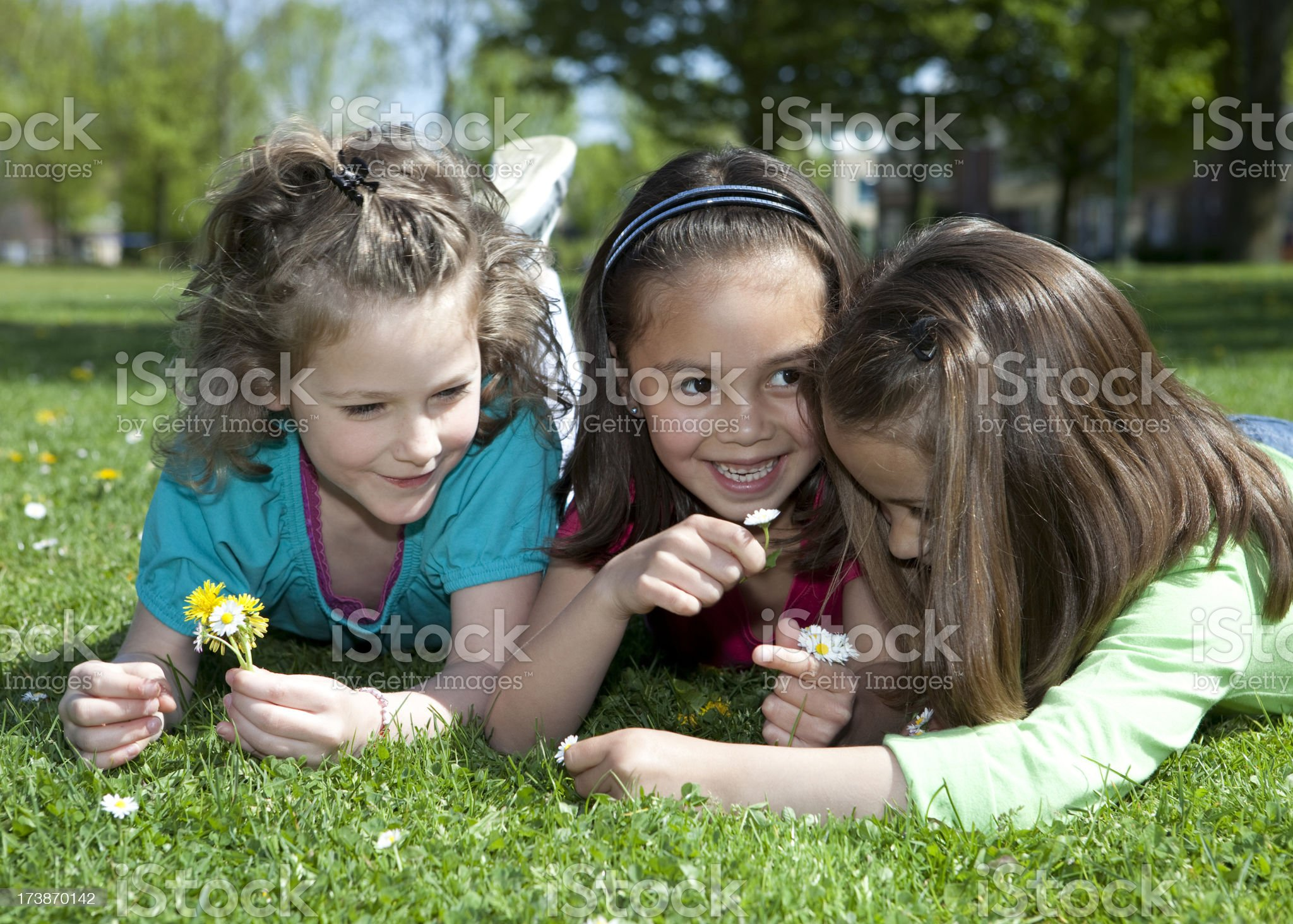 Three girls having biology about the growing of plants royalty-free stock photo