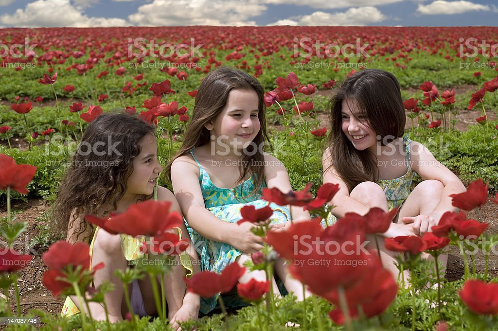 three girls in a red field stock photo