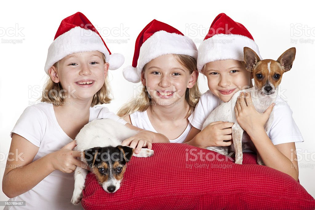 Three girls wearing red Christmas santa hats with puppy dogs royalty-free stock photo