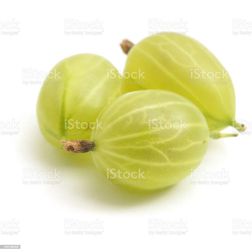 Three Gooseberries stock photo