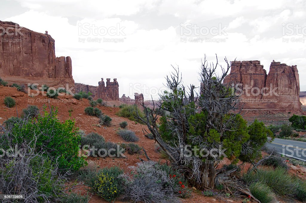 Three Gossips and The Organ Rock Formations at Arches stock photo