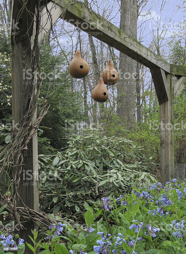 Three gourd birdhouses hanging from an arbor royalty-free stock photo