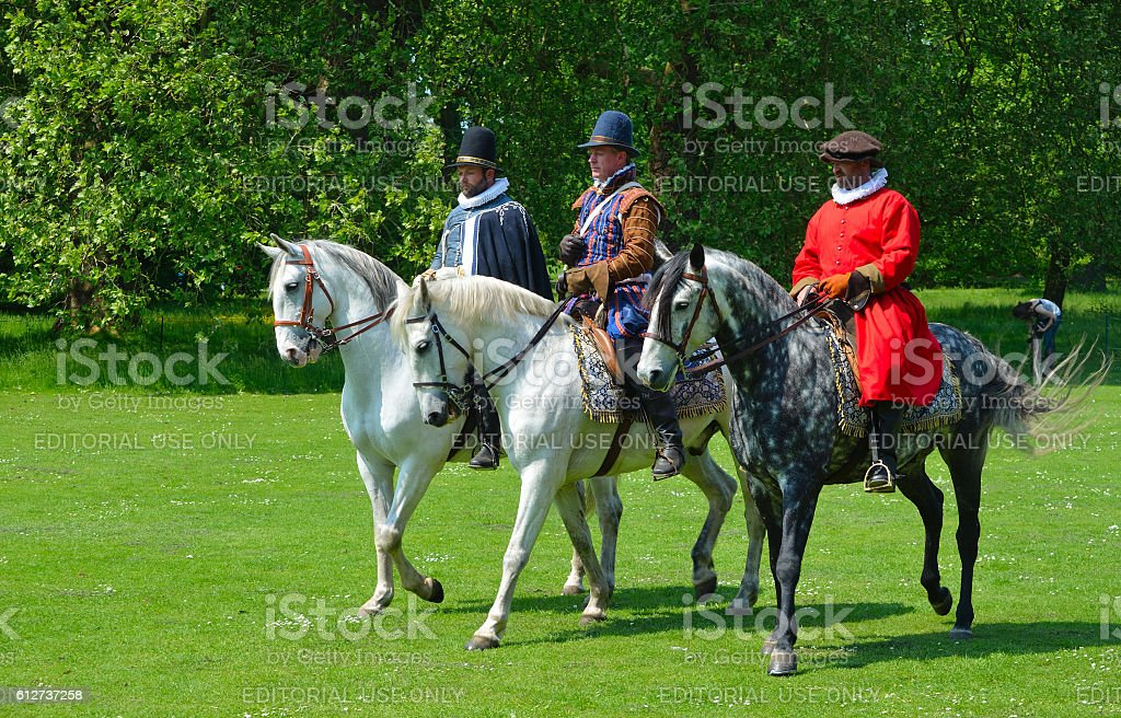 Three Gray horses stock photo