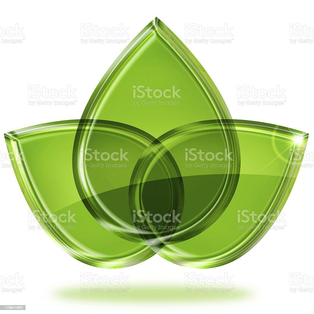 three green leaves royalty-free stock photo