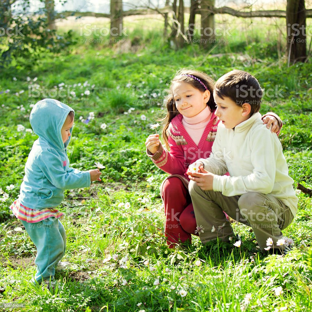 Three happy siblings collecting anemones in a spring meadow stock photo
