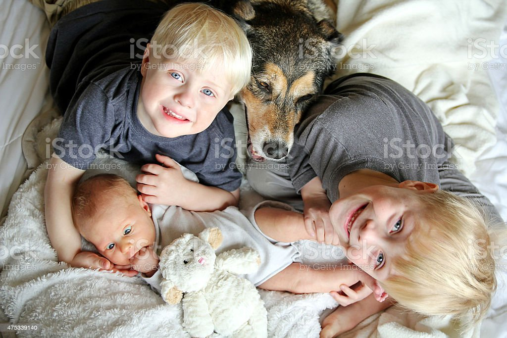 Three Happy Young Children Snuggling with Pet Dog in Bed stock photo