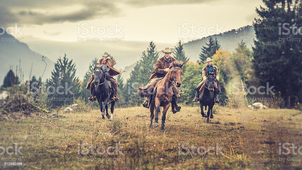Three horseback riders galloping across a field stock photo