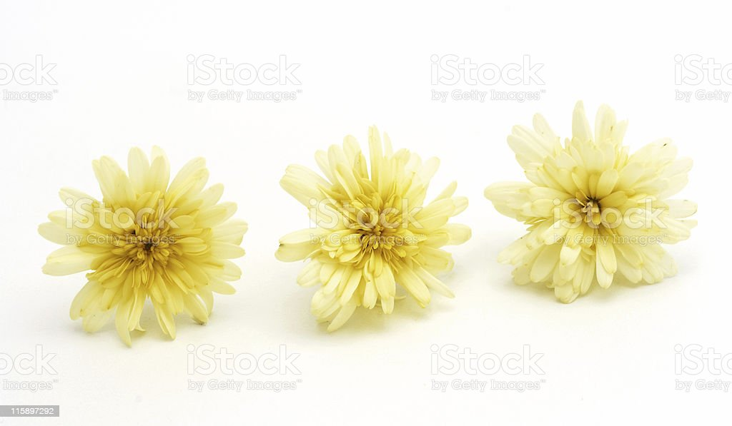 Three in a row royalty-free stock photo