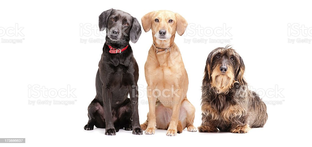 three in a row stock photo