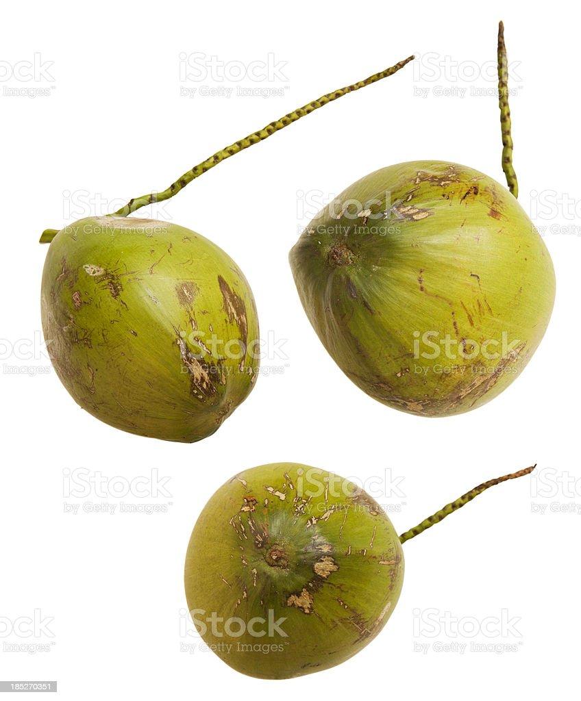 Three isolated fresh coconuts. stock photo
