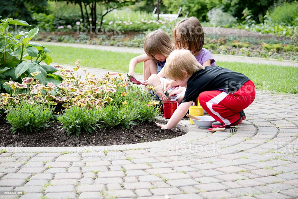 three kids gardening together stock photo