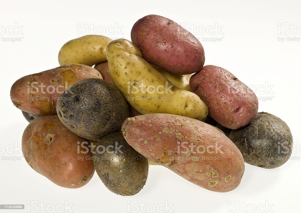 Three kind of fingerling potatoes stock photo