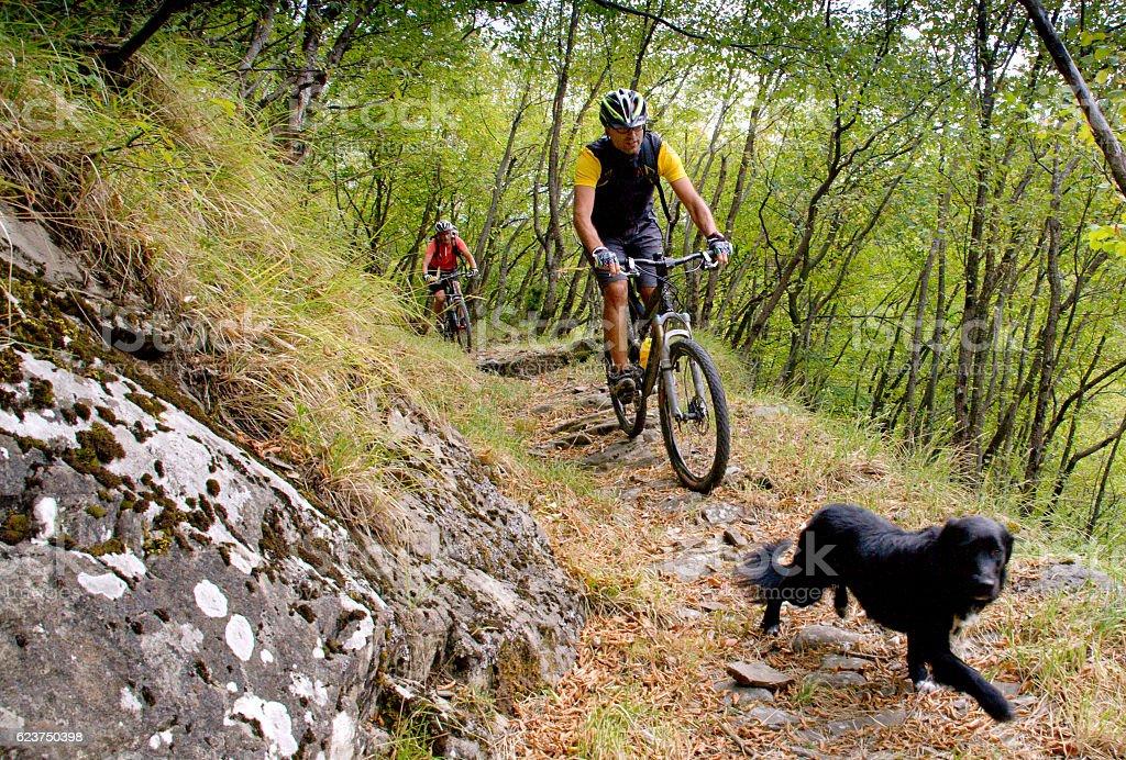 Three Limentre, Pistoia, Tuscany - Riding mountain bike stock photo